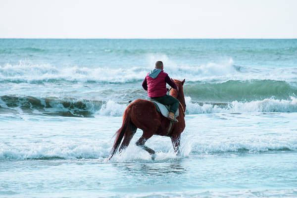 Photograph - Horse Riding In The Waters Of Ayia Erini Beach by Iordanis Pallikaras