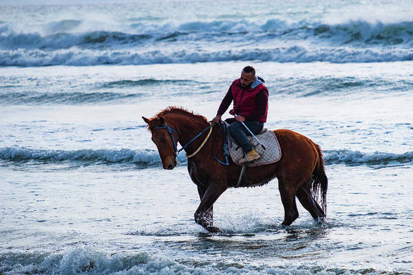 Photograph - Horse Riding On Ayia Erini Beach Again by Iordanis Pallikaras