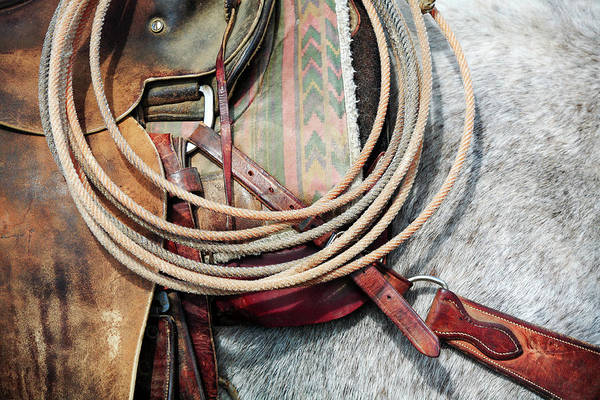 Wall Art - Photograph - Horse Tack by Todd Klassy