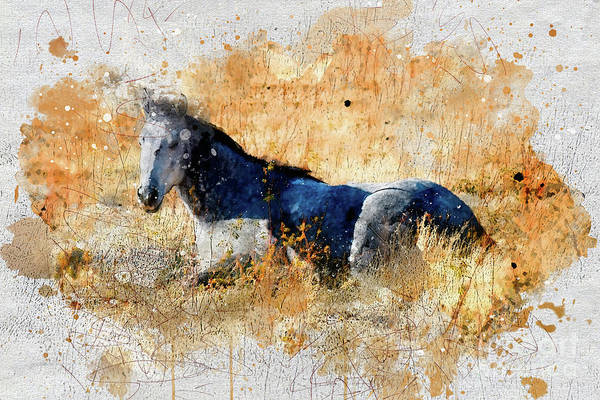 Digital Art - Horse Watercolor by Mark Jackson