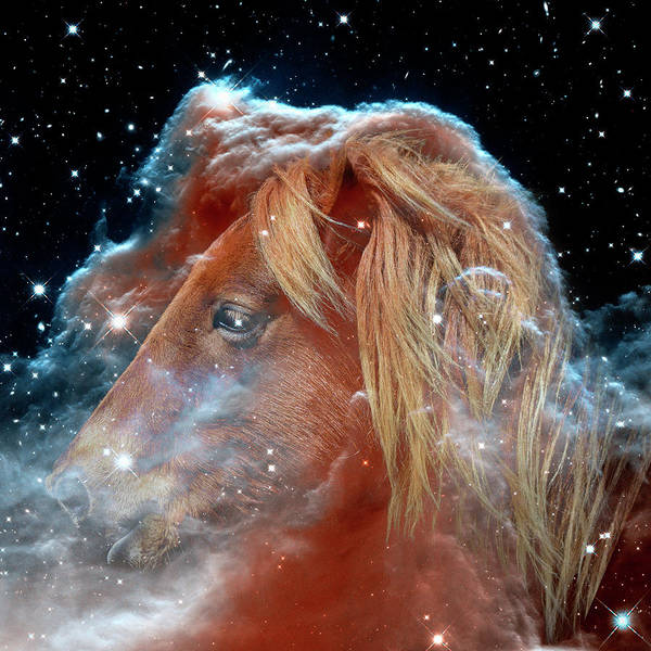 Photograph - Horsehead Nebula With Horse Head Outer Space Image by Bill Swartwout Photography