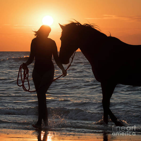 Photograph - Horsewoman by Arterra Picture Library