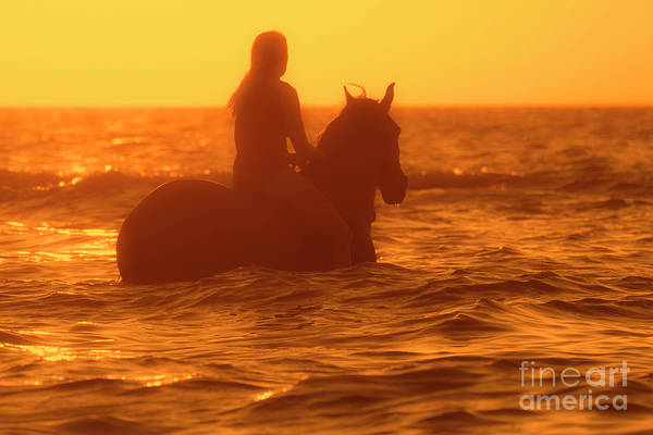 Photograph - Horsewoman At Sunset by Arterra Picture Library