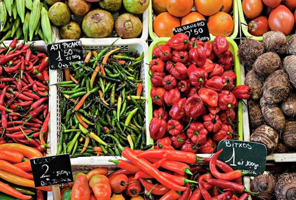 Wall Art - Photograph - Hot & Colorful Chilly Peppers by Tracy Packer Photography