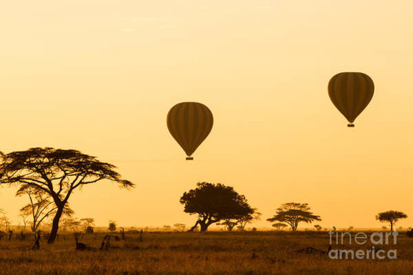 Air Balloon Wall Art - Photograph - Hot Air Balloons Over The Serengeti At by Jez Bennett