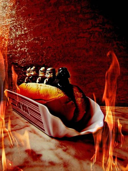 Humor In Art And Photograph - Hot Dog by Heather Estrada