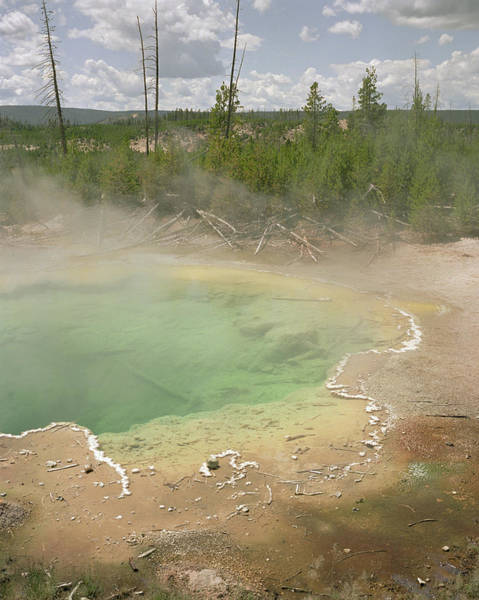 Water Lillies Photograph - Hot Springs At Yellowstone National by Lilly Dong