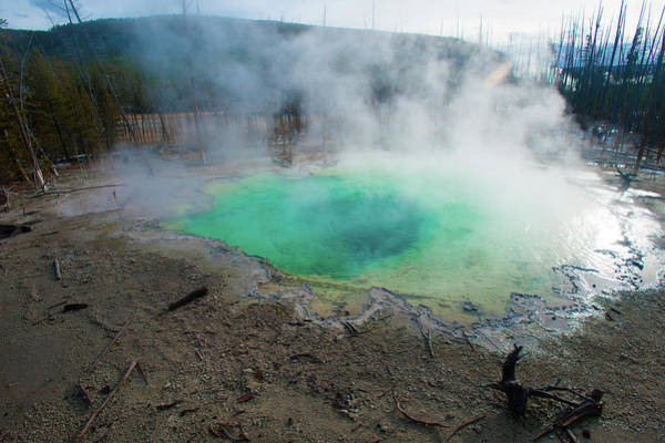 Photograph - Hot Springs In Yellowstone National Park by Mark Duehmig