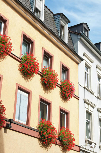 Old Photograph - Houses In Old Town, Heidelberg, Germany by Danita Delimont
