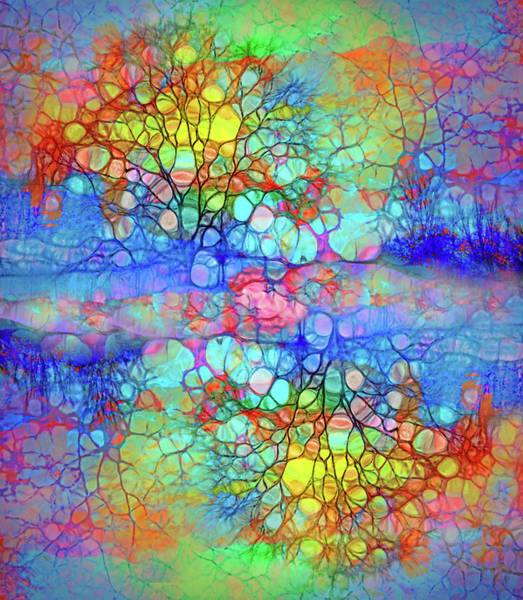 Distortions Digital Art - How Trees Embrace Their Differences by Tara Turner