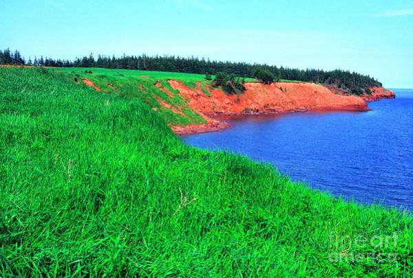 Photograph - Howe Point Prince Edward Island by Thomas R Fletcher