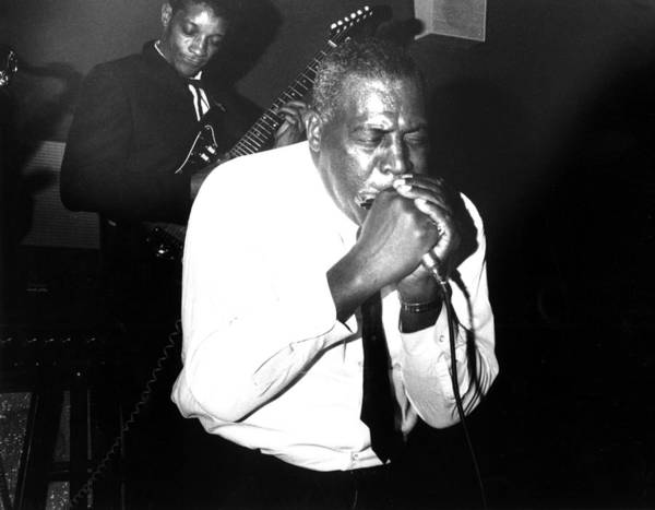 Harmonica Photograph - Howlin Wolf Performing In Detroit by Michael Ochs Archives