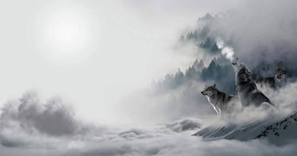 Predator Painting - Howling by ArtMarketJapan