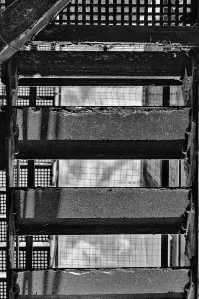 Photograph - Melodrama by John Dakin
