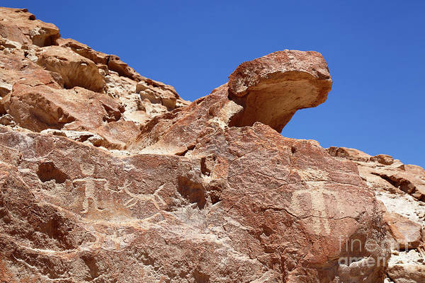 Photograph - Human And Camelid Petroglyphs At Ofragia Chile by James Brunker