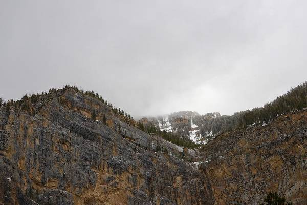 Photograph - Humboldt Toiyabe National Forest by Sagittarius Viking