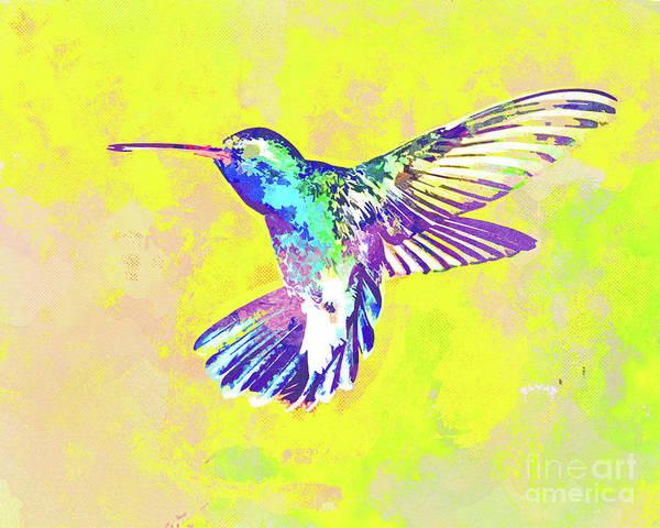 Wall Art - Mixed Media - Hummingbird Dance I by Chris Andruskiewicz