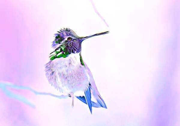 Photograph - Hummingbird Dream by Fraida Gutovich