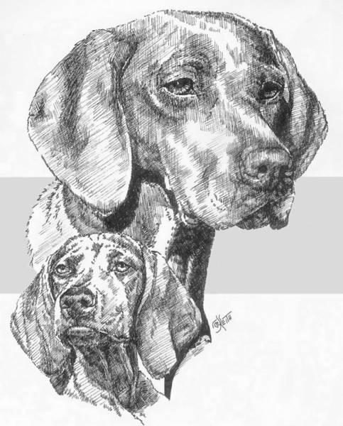 Drawing - Hungarian Vizsla And Pup by Barbara Keith