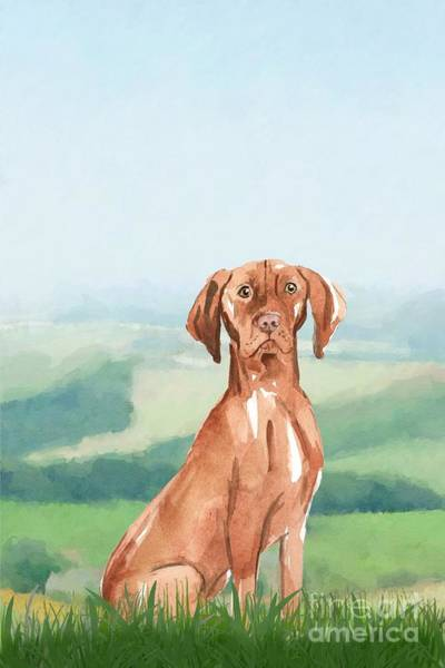 Pedigree Painting - Hungarian Vizsla by John Edwards