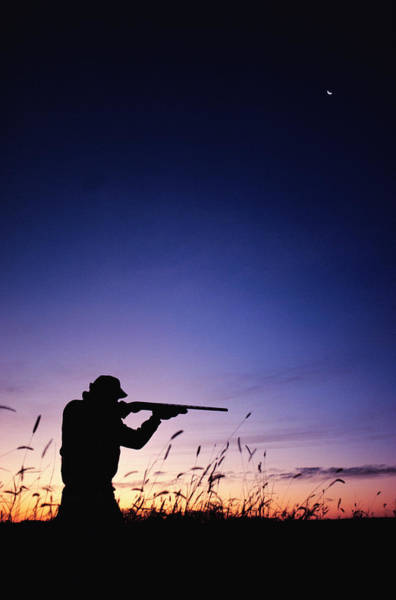 Rifle Photograph - Hunter Silhouette by J&l Images