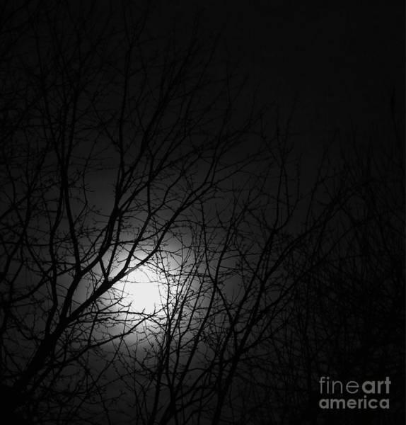 Photograph - Hunters Moon by Jon Burch Photography