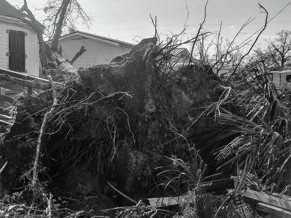 Wall Art - Photograph - Hurricane Michael 5 by Debra Forand