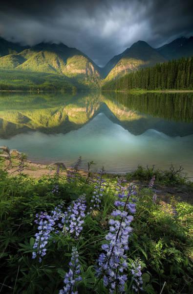 Photograph - Hurried Light / Holland Lake, Montana  by Nicholas Parker