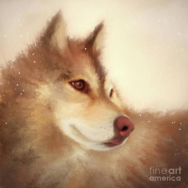 Digital Art - Husky Dog by Anne Vis