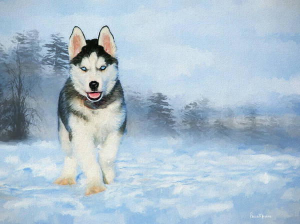 Wall Art - Painting - Husky Pup In The Snow - Painting by Ericamaxine Price