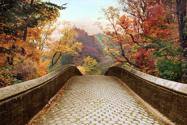 Photograph - October Overpass by Jessica Jenney