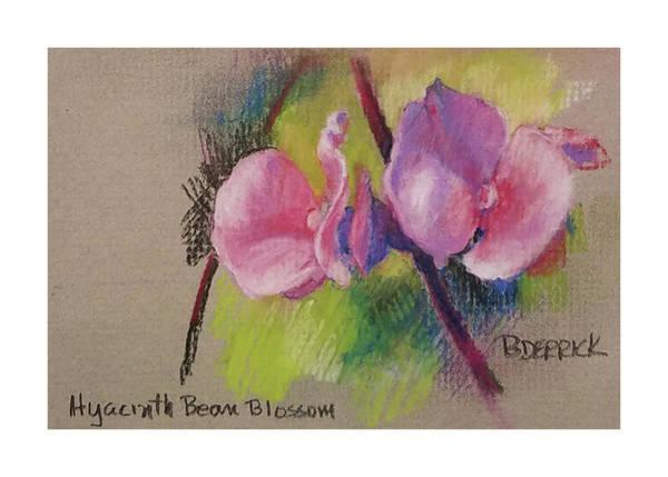 Pastel - Hyacinth Bean Blossom by Betsy Derrick