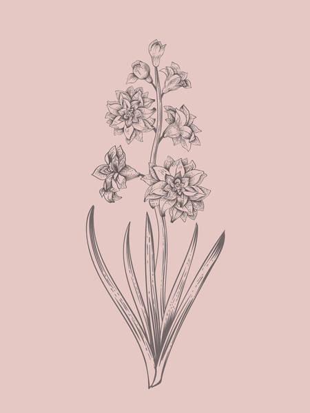 Bouquet Mixed Media - Hyacinth Blush Pink Flower by Naxart Studio
