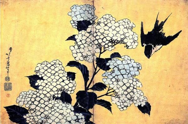 Wall Art - Painting - Hydrangea And Swallow  by Katsushika Hokusai