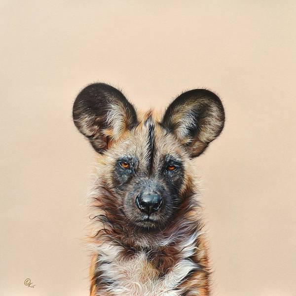 Drawing - I Am A Wild Thing - African Painted Dog by Elena Kolotusha