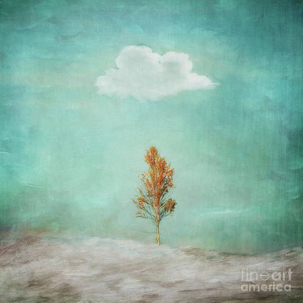 Wall Art - Photograph - I Am Not Dark Said The Cloud by Priska Wettstein