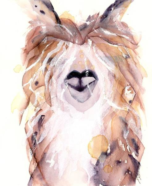Alpaca Painting - I Really Need A Haircut by Dawn Derman