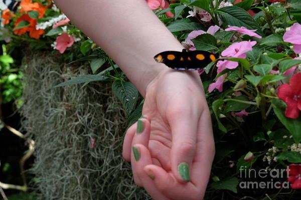 Wall Art - Photograph - I Touch A Hand by Inez Ellen Titchenal