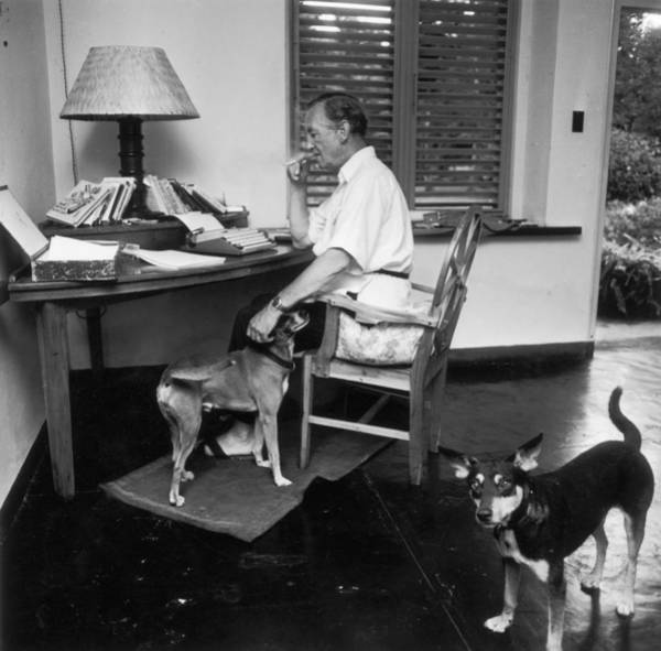 Greater Antilles Photograph - Ian Fleming by Harry Benson