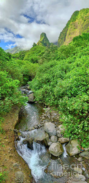 Andrew Jackson Wall Art - Photograph - Iao Valley In Maui Hawaii Panoramic by Andrew Jackson