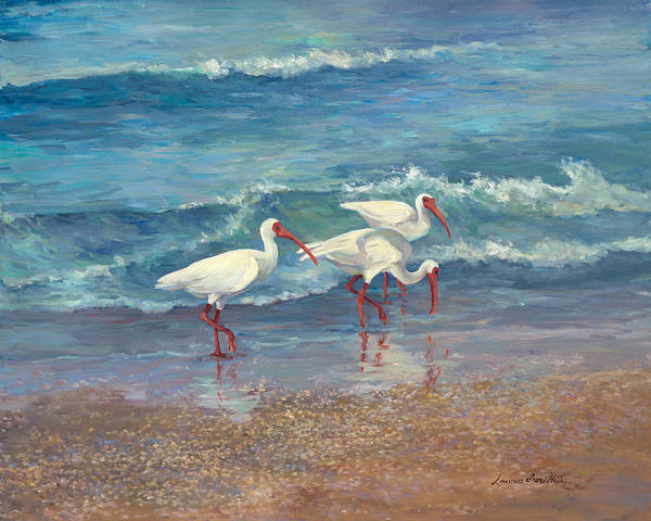 Ibis Painting - Ibis Trio - Ibis On The Beach by Laurie Snow Hein