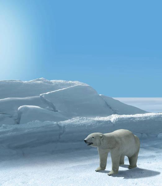 Frozen Tundra Digital Art - Ice Bear Hunting Polar Arctic Region by Oliver Denker