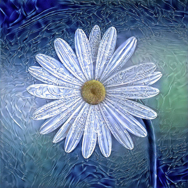 Digital Art - Ice Daisy Flower by Alex Mir
