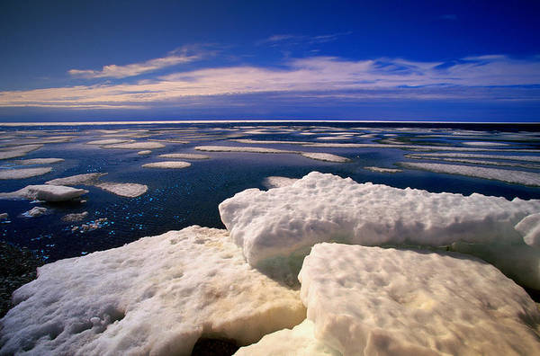 Wall Art - Photograph - Ice Floe by Eastcott Momatiuk