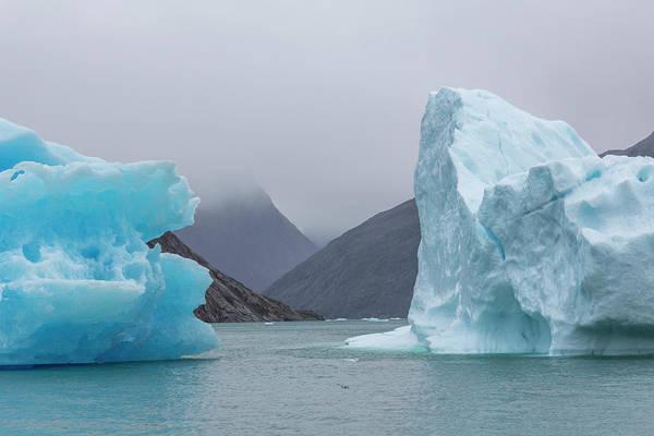 Photograph - Ice Giants by Raelene Goddard