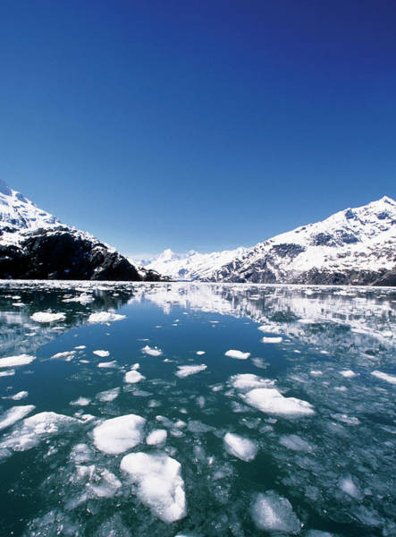 Glacier Bay Photograph - Ice Melting On John Hopkins Glacier by Medioimages/photodisc