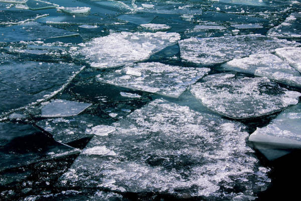 Photograph - Ice by Stuart Manning