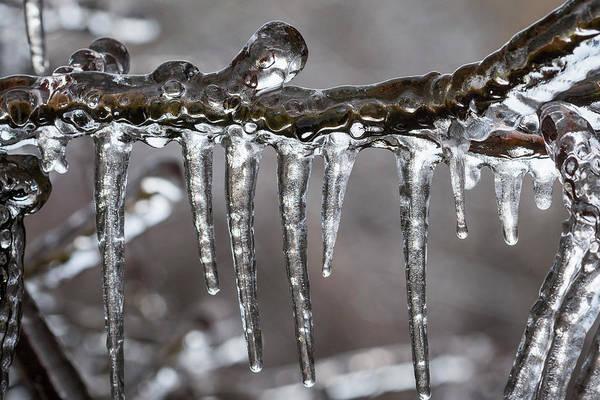 Photograph - Ice9 by Robert Potts