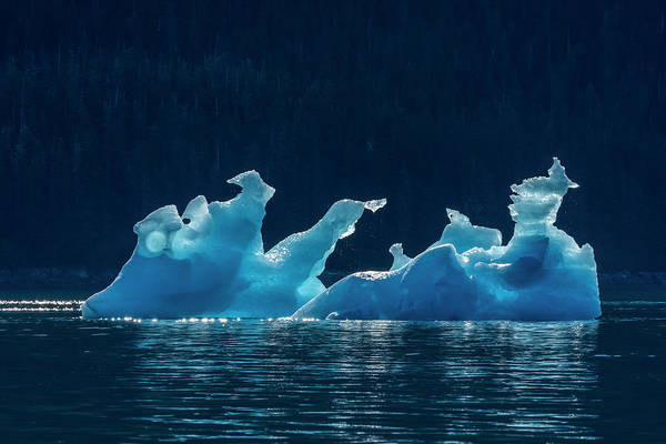 Wall Art - Photograph - Iceberg Floating In Tracy Arm, Tongass by John Hyde