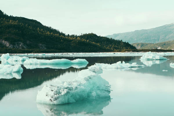 Glacier Bay Photograph - Icebergs Floating Off The Shore At The by Mint Images - Paul Edmondson